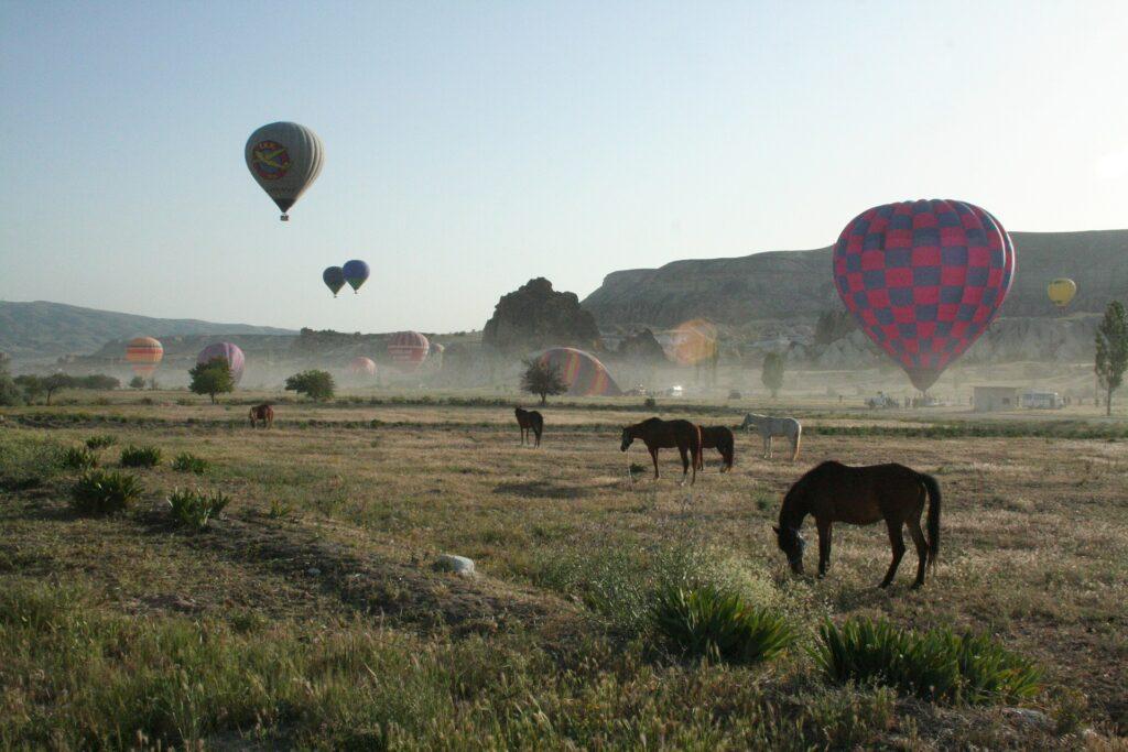 balloon 2596329 1920 1024x683 - Natur billeder af Kappadokien